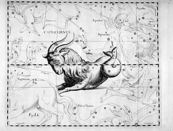 Capricorno visto da Hevelius