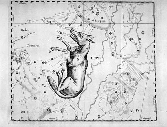 Lupo visto da Hevelius