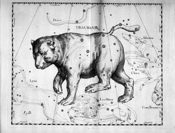 Orsa Maggiore vista da Hevelius