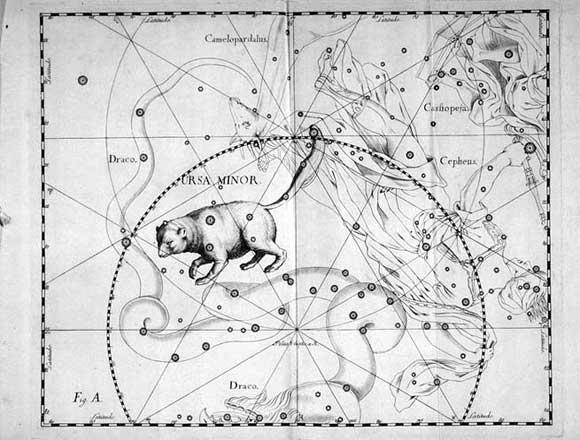 Orsa Minore vista da Hevelius