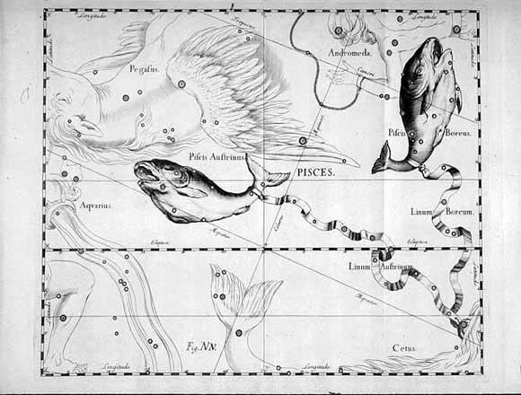 Pesci visto da Hevelius
