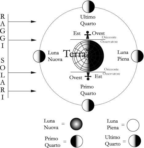 Fig 11.7 - Le fasi lunari