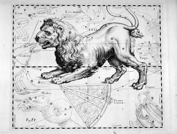 Leone visto da Hevelius