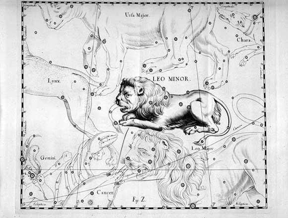 Leone Minore visto da Hevelius