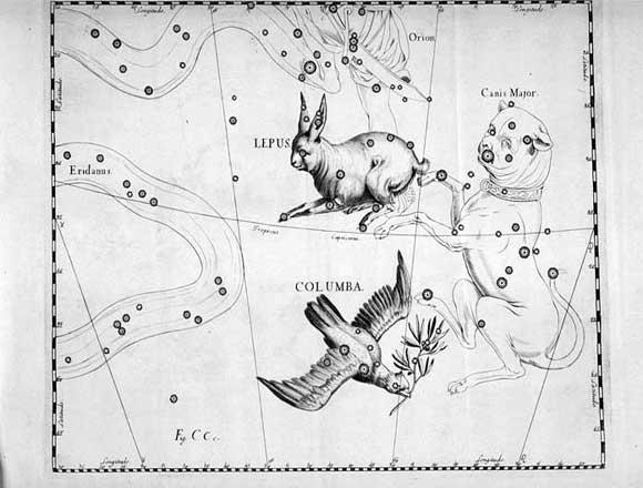 Colomba vista da Hevelius