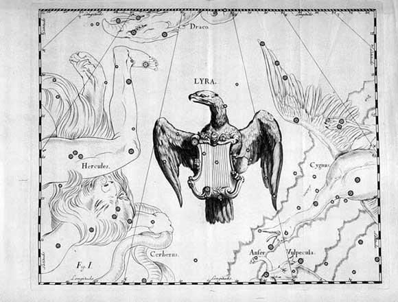 Lira visto da Hevelius