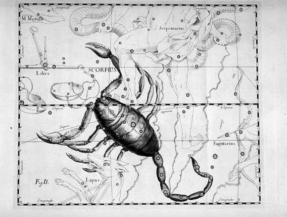 Scorpione visto da Hevelius