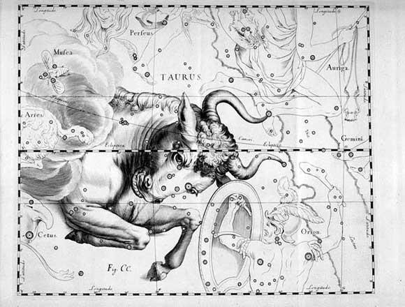 Costellazione del Toro