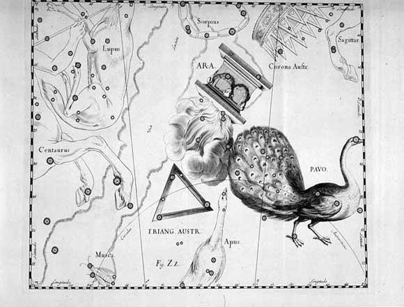 Costellazione Triangolo Australe